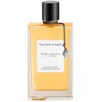 Rose Velours EDP - VAN CLEEF & ARPELS. Compre o melhor preço e ler opiniões.
