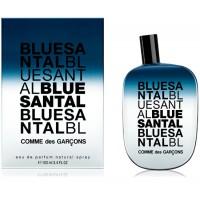 Bleu Santal EDP - COMME DES GARÇONS. Compre o melhor preço e ler opiniões.