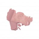 Colorete Blush Prodige