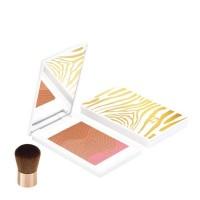 Sisley Phyto-Touche Sun Glow - SISLEY. Compre o melhor preço e ler opiniões