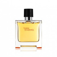 Terre d'Hermès EDP - HERMES. Compre o melhor preço e ler opiniões.