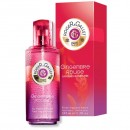 Gingembre Rouge 100ml